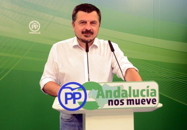 El vicesecretario de Organización del PP Andaluz, Toni Martín.
