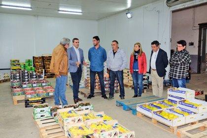 El PP apoyará a las cooperativas agrarias para potenciar la internacionalización de sus productos