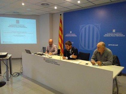 El Govern amplía las cacerías nocturnas de conejos a toda la provincia de Lleida