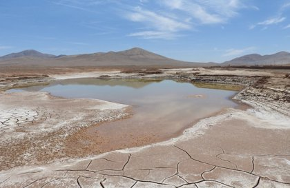Las primeras lluvias en 500 años devastan la vida microbiana en Atacama
