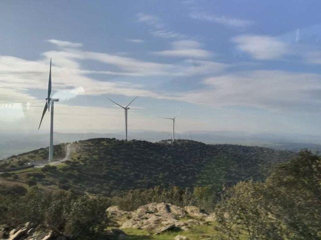 Parque Eólico Merengue de Plasencia