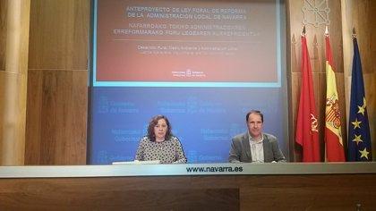 """Elizalde muestra su """"satisfacción"""" por el dictamen del Consejo de Navarra sobre la """"legalidad"""" de la reforma local"""