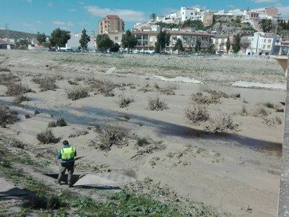 La CHG inicia el Plan de Vigilancia Especial para la campaña oleícola 2018-2019