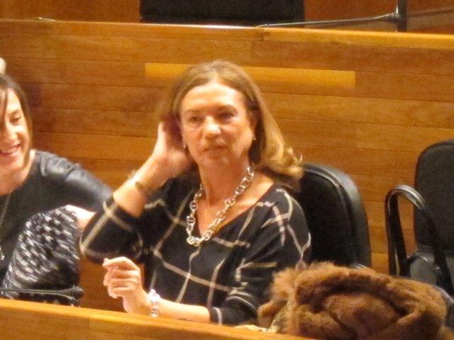 La diputada del PSOE Dolores Campillo