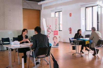 PalmaActiva realiza una jornada de selección de personal para cubrir 80 plazas en tres empresas de alquiler de coches