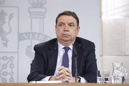 """España apuesta por una """"postura nacional"""" en las negociaciones de la reforma de la PAC"""