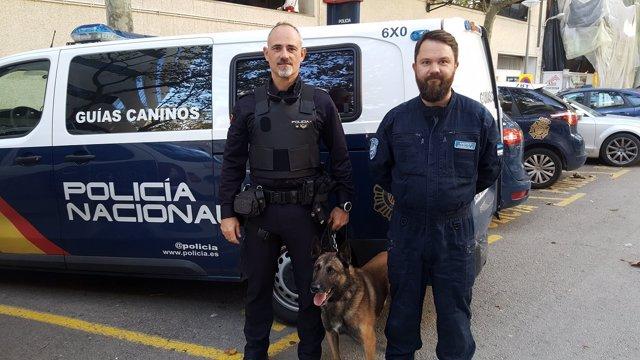 Un agente de la Unidad de guías caninos de Baleares y su homólogo en Estonia intercambian 'buenas prácticas' policiales
