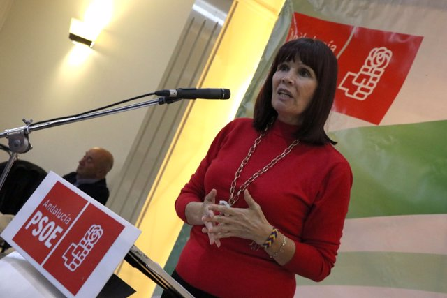 La presidenta del PSOE-A, Micaela Navarro