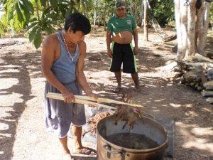 Locales de la zona cocinan Ayahuasca.