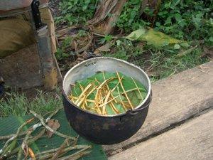 Preparación de la ayahuasca.