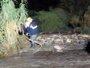 Rescatados un hombre y su madre atrapados entre dos ramblas por la lluvia en Carboneras (Almería)
