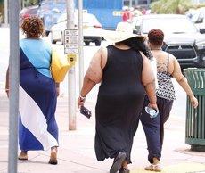 Un estudi troba el mecanisme pel qual l'obesitat fa que els adipòcits no funcionin correctament (PIXABAY - Archivo)