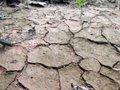 LAS ONG AMBIENTALES LAMENTAN LA FALTA DE AMBICION CON OBJETIVOS INSUFICIENTES DEL BORRADOR DE LA LEY DE CAMBIO CLIMATICO