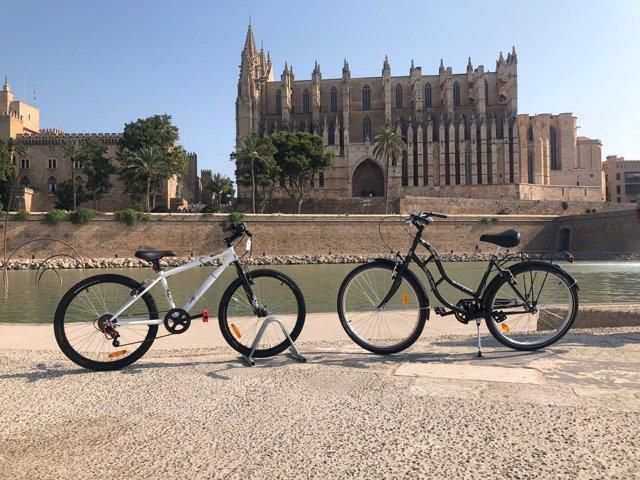 Bicicletas frente a la Catedral de Mallorca
