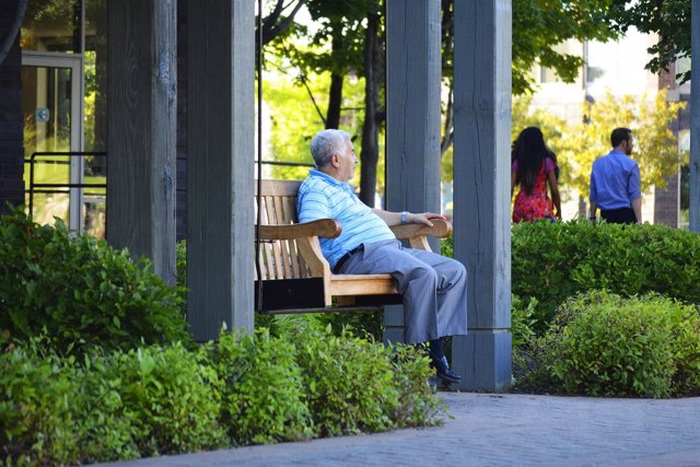 Un anciano descansa en un banco