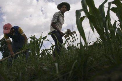 Aumenta el número de iberoamericanos pobres en el entorno rural