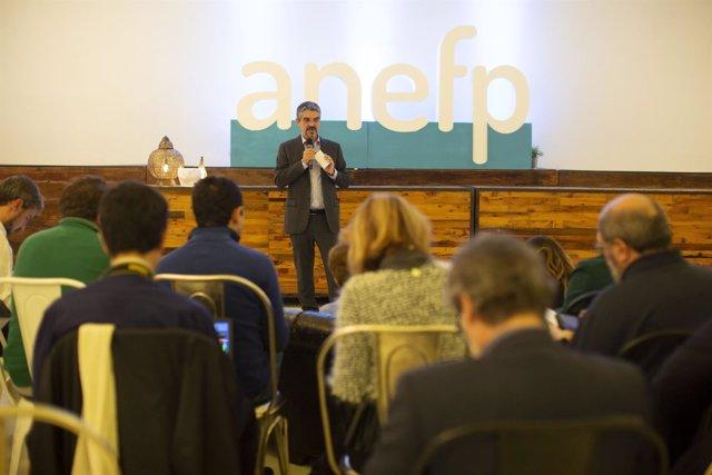 Jaume Pey, Director General De La Anefp