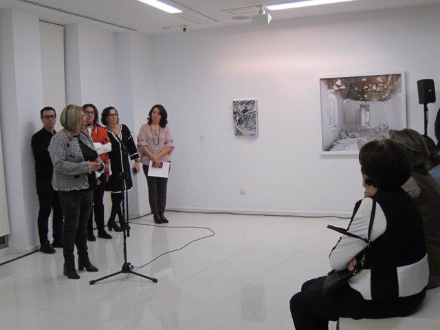 Fallo del XXI del Premio de Artes Plásticas de Diputación de Cáceres