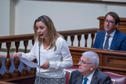 """PSOE denunciará en el Parlamento de Canarias el """"uso clientelista"""" de CC del Fdcan"""