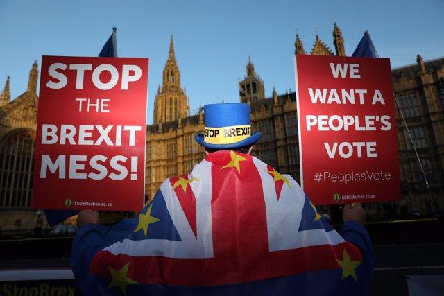 Manifestante contra el Brexit en Londres