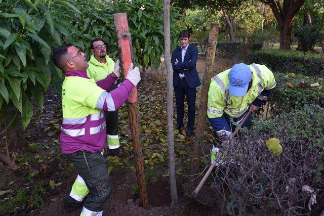 Guevara observa la plantación de árboles en los Jardines del Valle