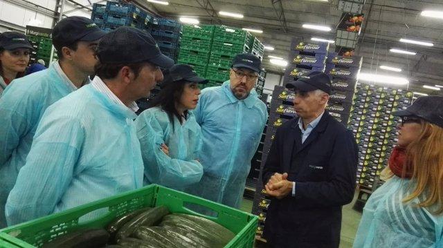 El diputado nacional de Cs, Juan Carlos Girauta, visita la empresa Murgiverde