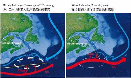 Circulación oceánica