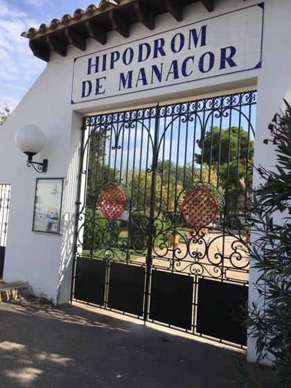 """Detienen las inversiones en el hipódromo de Manacor porque el Ayuntamiento  """"solo tiene el 40% de la propiedad"""""""