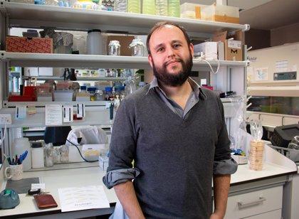 Investigadores IBBTEC descubren cómo miden las bacterias la concentración de antibióticos y se vuelven inmunes