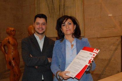 """El PSOE presenta una enmienda a la totalidad a los presupuestos al carecer de """"vigor"""" para el crecimiento económico"""
