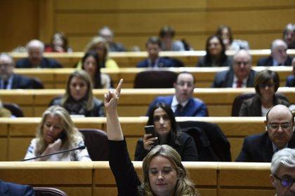 VOX logra un senador en representación de la CCAA, PSOE y PP pierden miembros, Cs obtiene 2 y Adelante mantiene uno