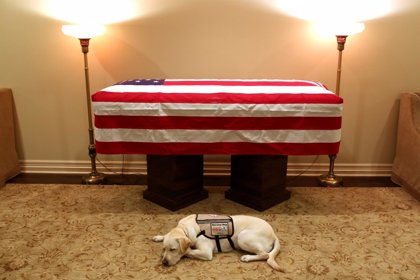 El féretro de Bush padre partirá rumbo a Washington para los funerales de Estado