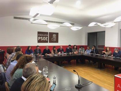 """2D.- El PSOE defiende que vuelve a ganar en la provincia pero pide """"tomar nota y reflexionar"""" de la abstención"""