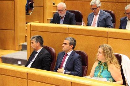 El PP quiere empezar en enero a trabajar sobre la tesis de Pedro Sánchez en el Senado
