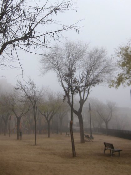 Previsión meteorológica en Extremadura para este miércoles, 5 de diciembre