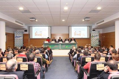 """Acor cierra la campaña 2017-2018 con 3,5 millones de pérdidas tras la """"brutal"""" caída del precio del azúcar"""