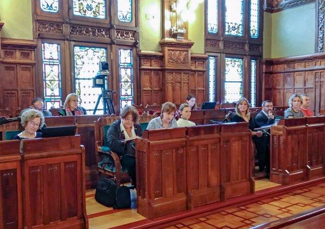 La consejera Pilar Varela en la comisión de presupuestos