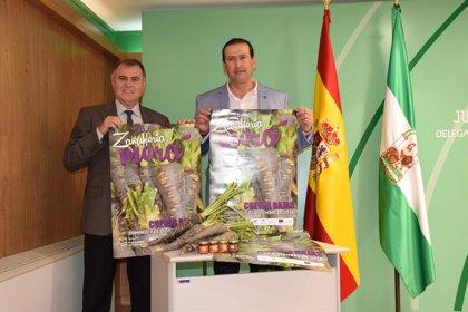 Cuevas Bajas celebra el domingo su Fiesta de la Zanahoria Morá con una previsión que supera los 6.000 visitantes