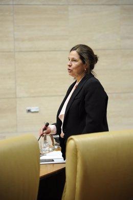 Blanco-Morales, en el Pleno de la Asamblea