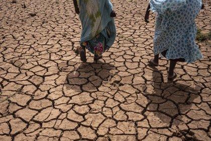 El hambre no es inevitable en el Sahel