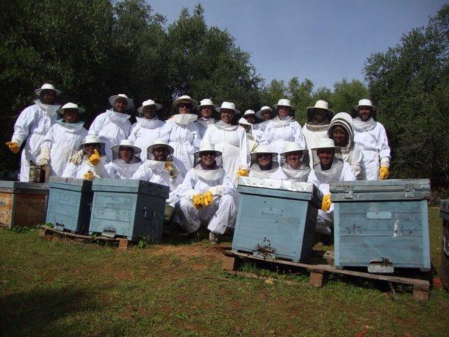 Participantes en el curso de apicultura