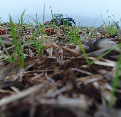 La AEACSV aboga por técnicas agrícolas de conservación para evitar la pérdida de suelo fértil