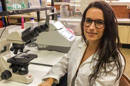 Una investigadora  española avanza en el estudio del Alzheimer al analizar el proceso cerebral de la información