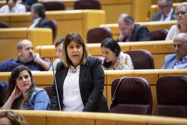 María Concepción Palencia, senadora de Podemos