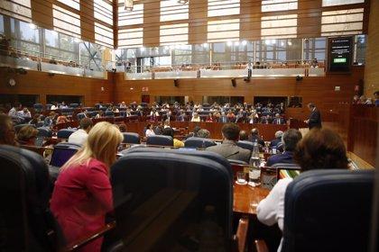La Asamblea pide modificar la Ley de Espectáculos Públicos para evitar más casos como el Madrid Arena