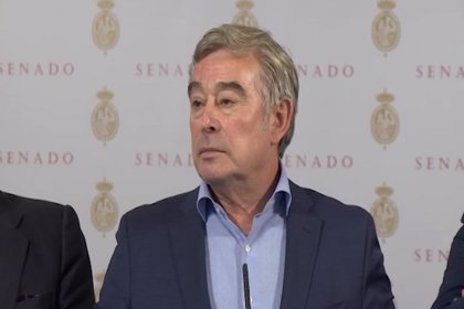 Barreiro (PP) descarta pactar el gobierno andaluz con Vox