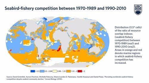 Competición aves marinas/industria pesquera