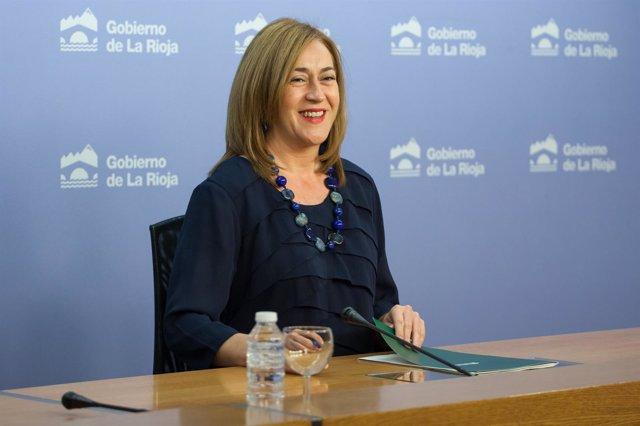 Martínez Arregui, en la rueda de prensa del Consejo