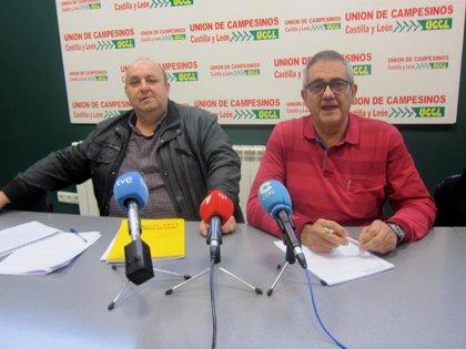 UCCL amenaza a Azucarera con concentraciones ante su sede en Madrid y fábricas por rebajar el precio por tonelada