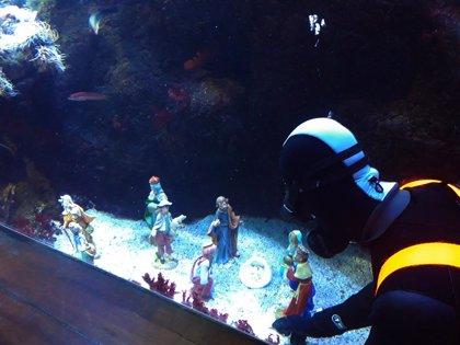 El Aquarium de San Sebastián mostrará hasta el 8 de enero un Belén sumergible